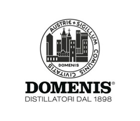 logo_DOMENIS